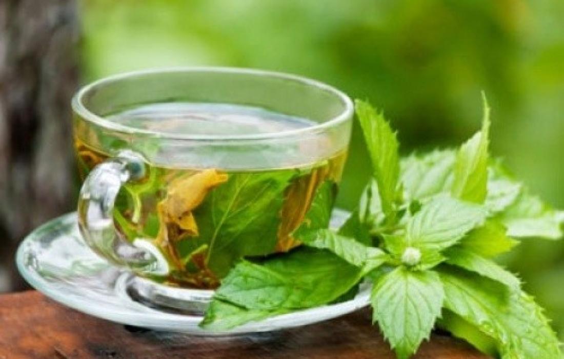 مكملات الشاي الاخضر