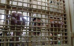 الأسرى داخل سجون الاحتلال.jpg