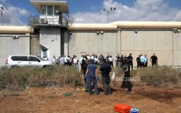 سجن جلبوع (12).jpg