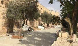 والدة المقدسي الفقيد علاء نبابتة تتشبث بقبره وترفض مغادرته، وقوات الاحتلال تبعدها عنه بالقوة تمهيدا لتجريف ما حوله