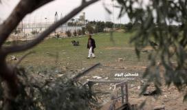 اثار القصف الصهيونى  (35258883) 
