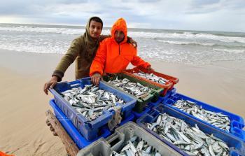 صيد سمك وفير خلال المنخفض الجوي